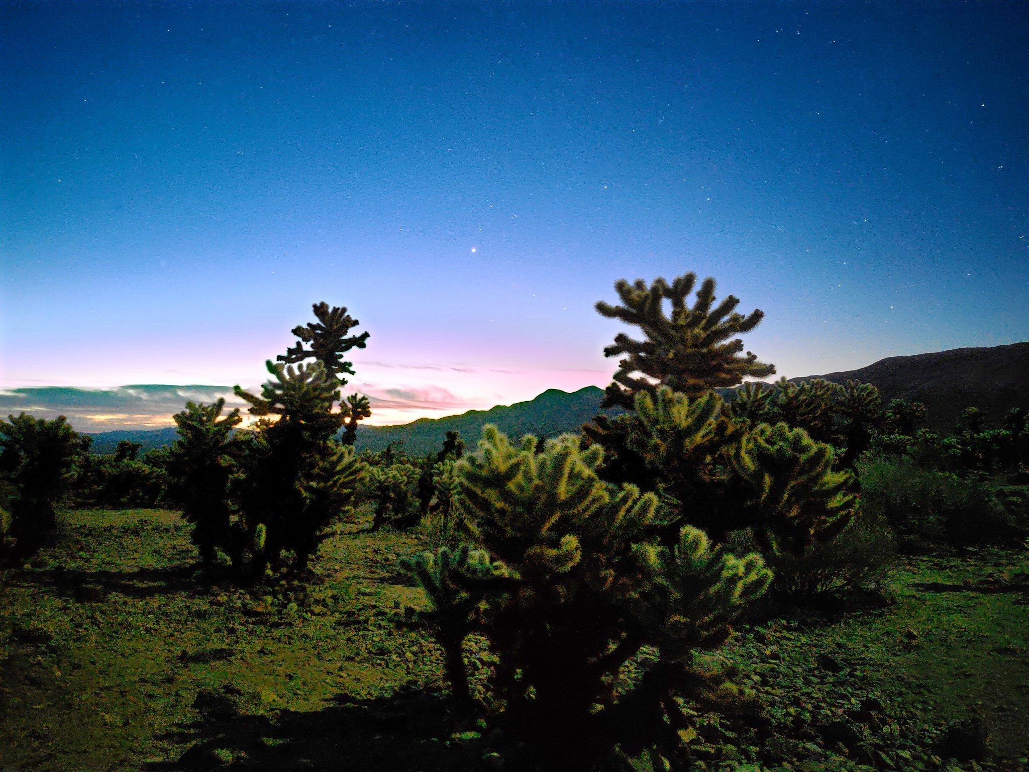 Примеры ночных фото на камеру смартфона Realme X50 Pro